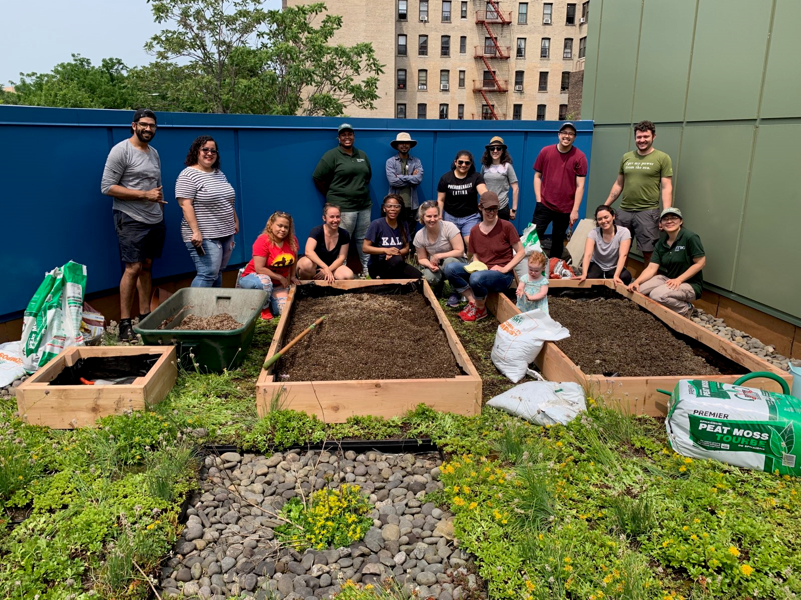 Staff and volunteers built a set of raised garden beds on the roof of our Walton Family Health Center.